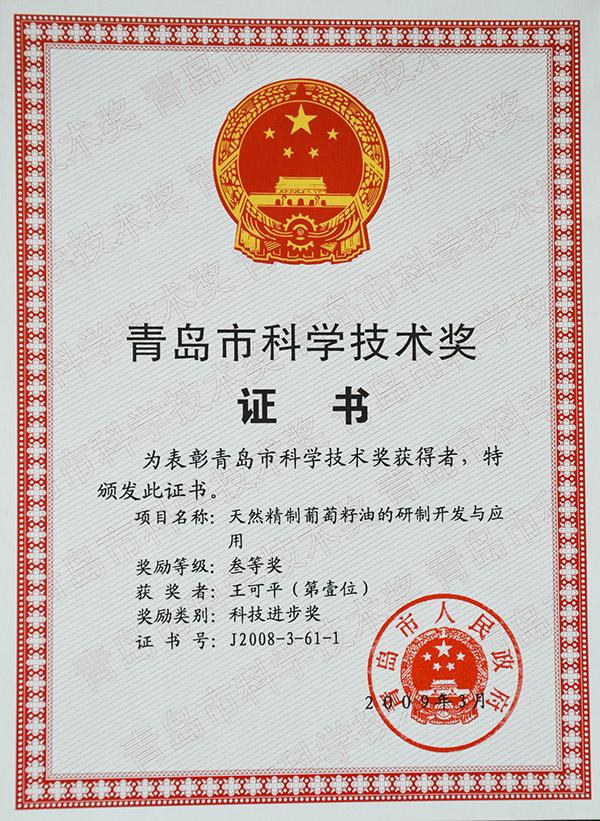 青岛市科学技术奖